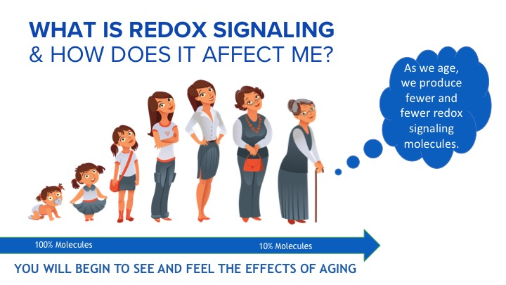 As we age we produce less redox signalling molecules